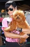 http://img14.imagevenue.com/loc844/th_02495_rihanna-puppy-4118-6_122_844lo.jpg